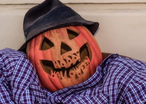 Halloween-2015-(159-of-241)