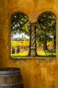 Under the Tuscan Rain