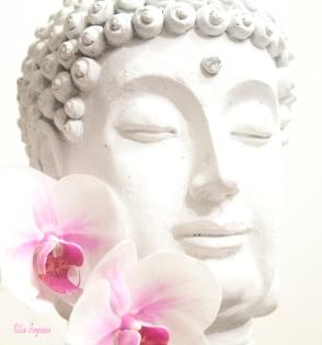 high-key-buddha
