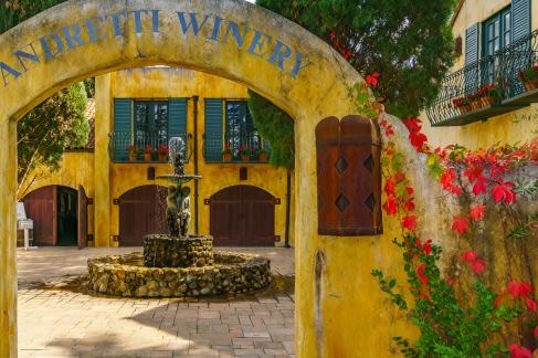 Andretti-Winery