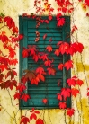Winery-Window-and-Fall-Leaves